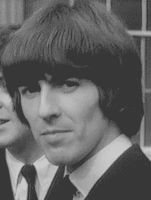 Look at the camera, boys! GIF by GeorgeHarrison12