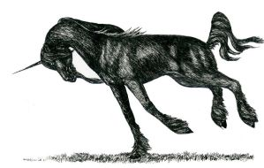 Black Unicorn Running by SpottedPegasus