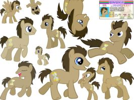 dr whooves wallpaper by 1970superbird