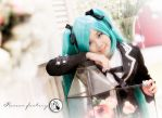 Hatsune Miku by RacoonFactory