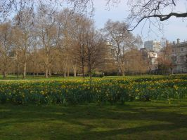 spring in the city by retARTed