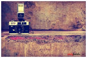 Classic camera.. by oddzoddy
