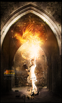 Rebirth of the Phoenix by Xeviousss