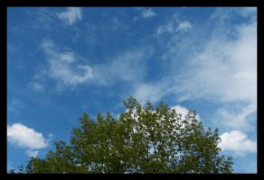 Into the blue Sky by Leichenengel