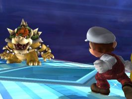 Fire Mario vs Bowser by MarioXfiles