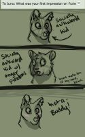 Ask Jurie - ShadowFlame's Question by Pedropoliss
