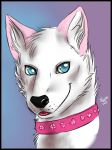 Headsketch commission - Jake Puppy by FuriarossaAndMimma