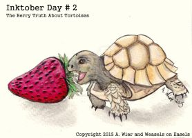 Inktober Day # 2 - The Berry Truth About Tortoises by 96037