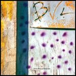 BVL by Direct2Brain