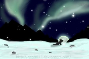 Northern lights by neo8833