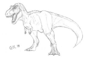 T-Rex by T-Joe