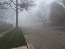 Foggy Day '12 04 by DNLnamek01