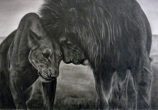 love lions by INSPIRATIONARTS
