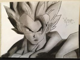 Goku : Dragon Ball - Z DBZ by vishesh999