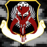 4th Expeditionary Wing Shield by Commander-A-21-Felix