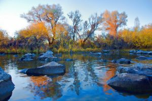 Snake River in Idaho Falls by zenpodd