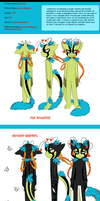 Kerfuffle Ref Sheet 2014 by SmilehKitteh