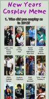 NY Cosplay Meme: 2013 by evilfuzzle2