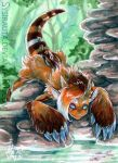 ACEO Fishwatch by Sysirauta