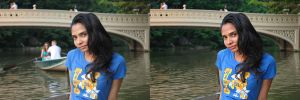 Chanrika-central park before-after draft by GinzoMike