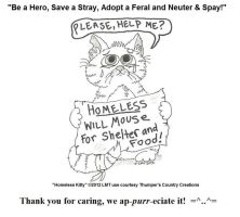 Homeless Kitty Sketch Turned Poster by IrThumper