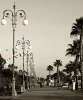 The Pride of Larnaca by erene