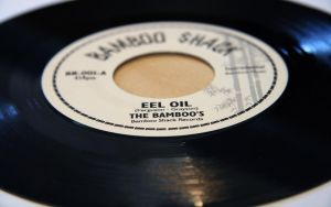 """""""Eel Oil"""" - The Bamboos by xephon45"""