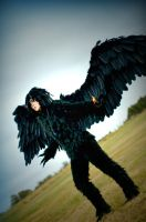 Dark Howl: Inerasable Curse by alita-b-angel