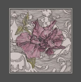 The Chinese Rose by Barbaroid