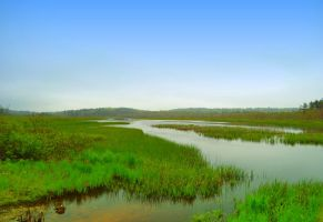 Channel Through the Swamp by wagn18