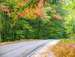 Maine autumn road by sataikasia