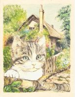 Cat in a Cottage Garden 3 by morgansartworld