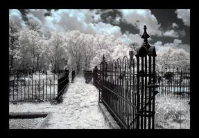 graveyard - infrared by rare-twinkie