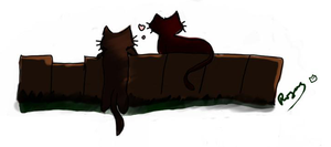 Sketcher kittys by RoxasRavenswood