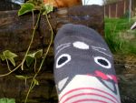 Cartoon Cat sock and the Ladbug flavored Ivy. by AngelicEvangelion