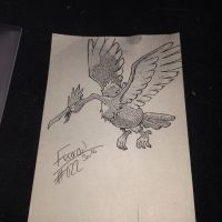 #022 - Fearow by poke-dots