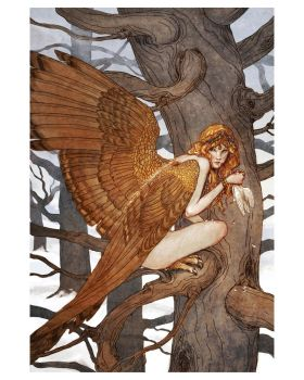 Harpy - print by bluefooted