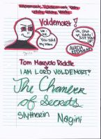 Harry Potter- Voldemort Doodle by enjoytheride201