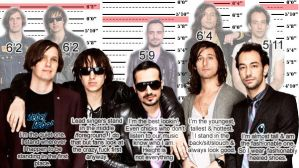 Strokes members heights by boxOFjuice