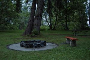 Rock Circle and Bench and Tree by happeningstock