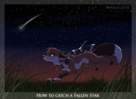 How to Catch a Fallen Star by Skailla