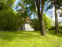 Green green grass of home by wycked-stock