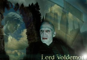 Voldemort's obsession by brainstorm1001