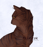 Tigerstar by SpiritOfBlackComet