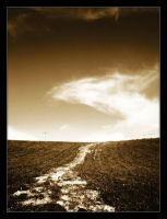 The Path by vlr