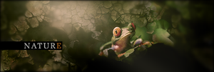 frog in nature by Dj-Hayabusa