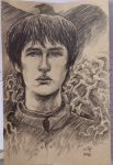 Bran Stark by olybear