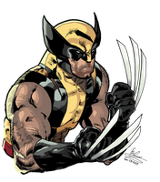 All New Wolverine by Atlas0