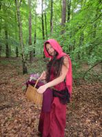 Red Riding Hood 15 by NaomiFan