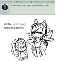Question 341 by AskShadowTheHedge